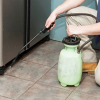 How To Resolve Pest Problems Effectively With professional Help